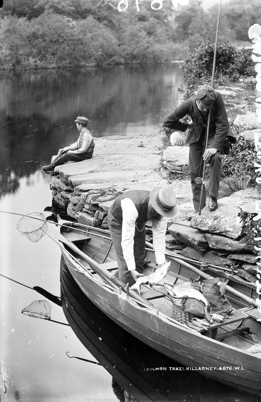 Ловля лосося в Килларни. 1880-е.