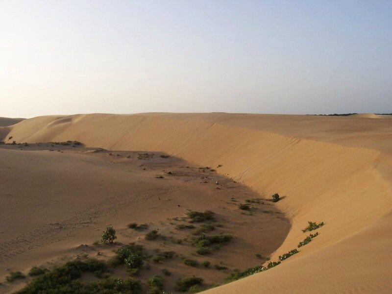 Невероятно красивая пустыня в парке Меданос де Коро 0 1c59ea 4780a82f XL