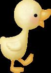 KAagard_AprilShowers_Duck.png