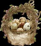 EasterOnTheFarm_Element01 (13).png