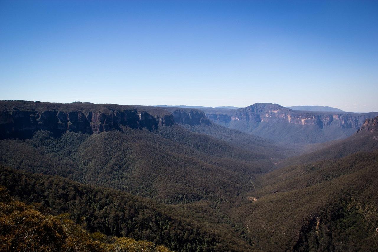 Голубые горы Австралии Мастерок жж рф Пешие тропы проходят по глубоким каньонам с отвесными стенами из песчаника по лесам среди бурно разросшихся эвкалиптов и древовидных папоротников