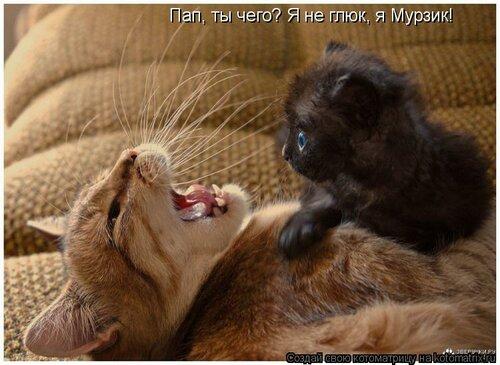 http://img-fotki.yandex.ru/get/6436/194408087.0/0_8d6d1_72da74ba_L.jpg