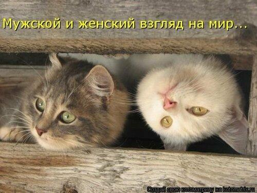 http://img-fotki.yandex.ru/get/6436/194408087.1/0_8de28_25a64d22_L.jpg