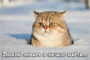 http://img-fotki.yandex.ru/get/6436/194408087.2/0_93ab6_215d4223_M.jpg