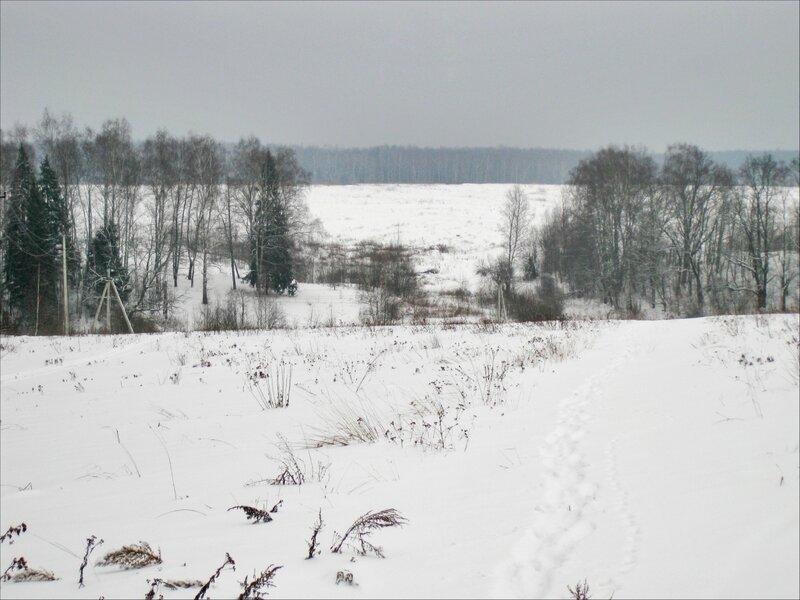 Вид на Протасовские поля