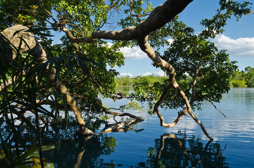 Фото 1. Сенот Асуль (Cenote Asul) рядом с озером Лагуна Бакалар (la Laguna de Bacalar). Отзывы туристов о самостоятельном путешествии по Мексике. Камера Nikon D5100 KIT 18-55 + полярик. Настройки при съемке: выдержка 1/125 сек., f/11.0, ИСО 160, фокусное расстояние 22 мм