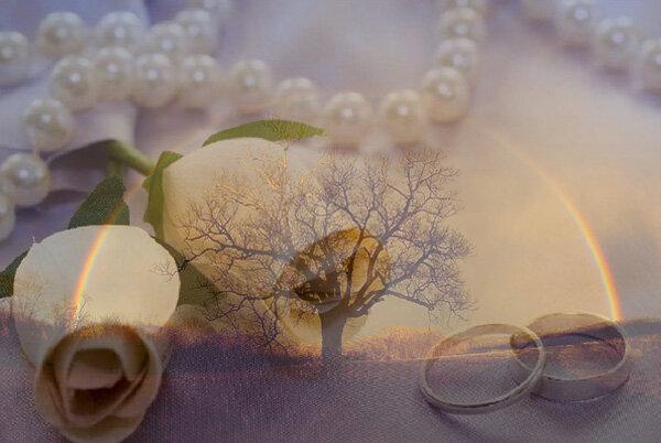 Годовщина Свадьбы 5 лет (деревянная свадьба)