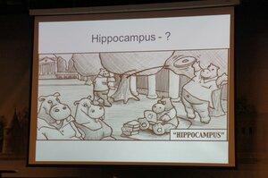 Что такое гиппокамп?