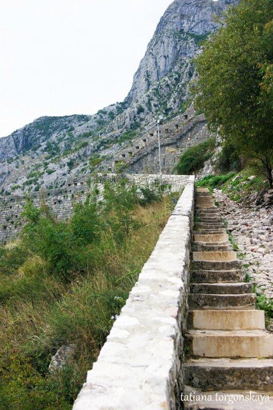 Лестница наеврх