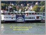 Поездка по Рейну от Бингена до Кобленца. Германия. Rheinreise von Bingen bis Koblenz.