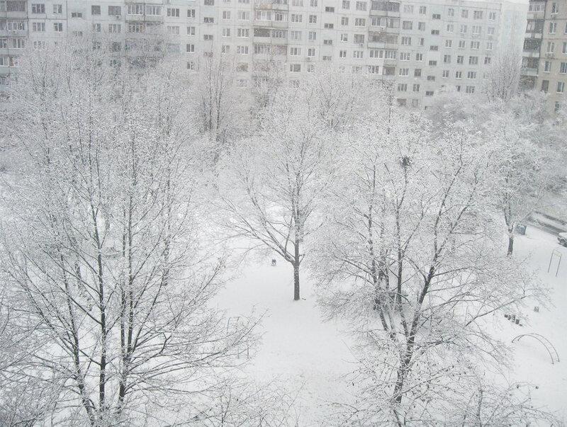 Снег во дворе 1