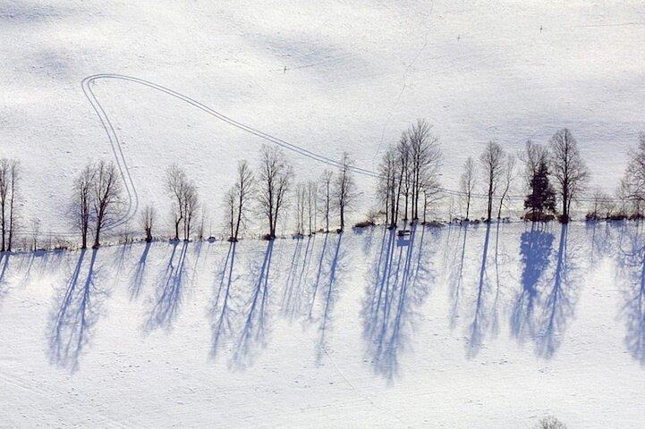Winterlandschaft mit Baumreihe