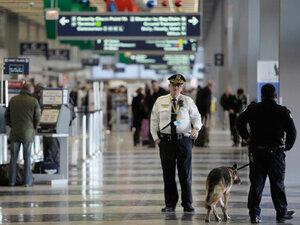 В аэропорту  США изъяли груз с 18 человеческими головами