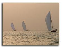ОАЭ. Дубаи. Traditional racing dhows in the Arabian Gulf off Dubai. Фото David Steele - Depositphotos