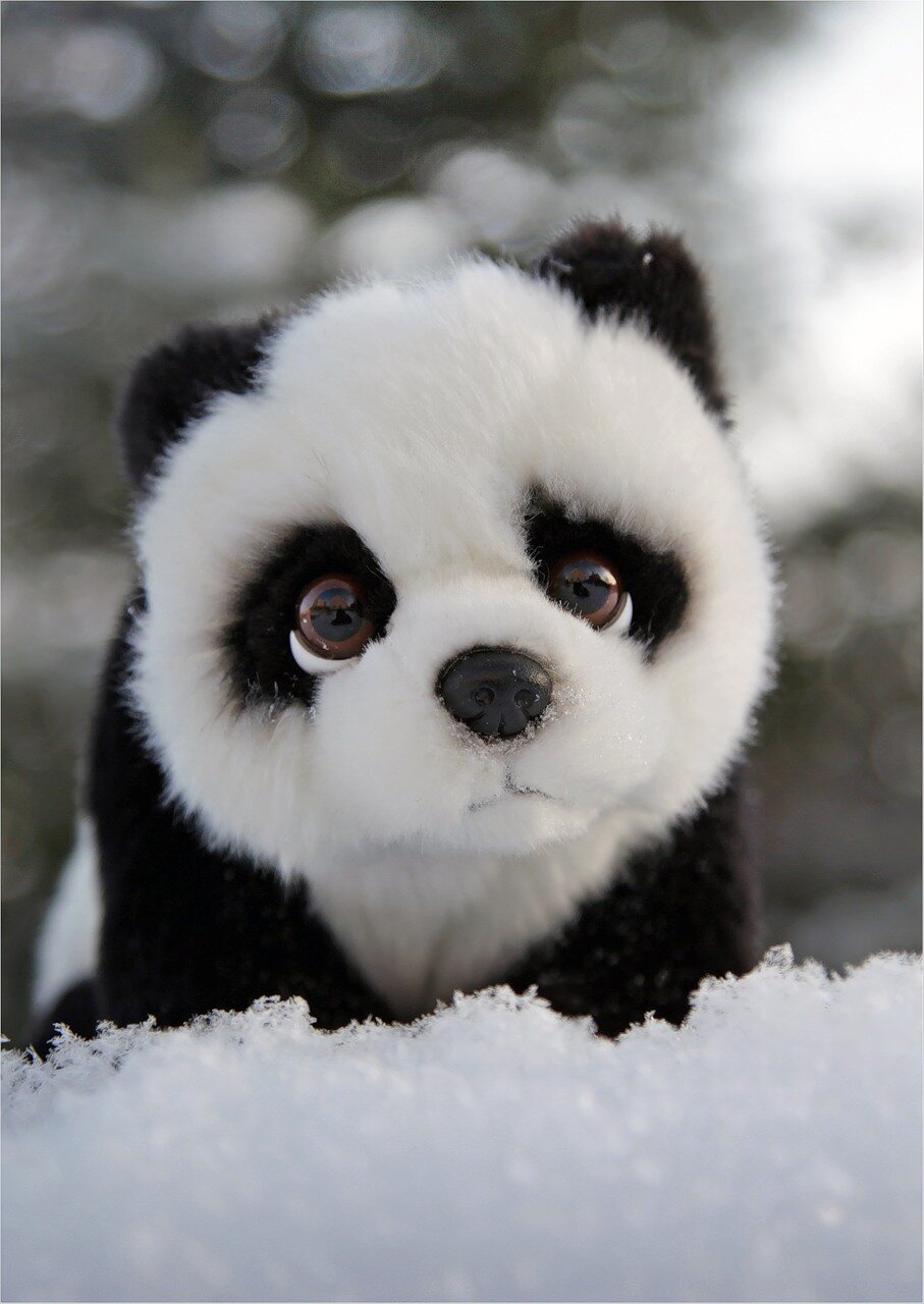 Ehentai wow panda gif nsfw pics