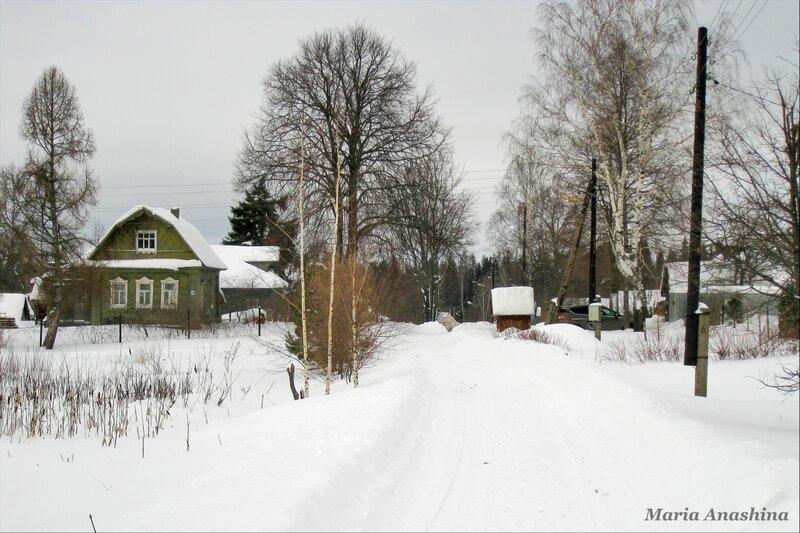 Улица в деревне Голенищево