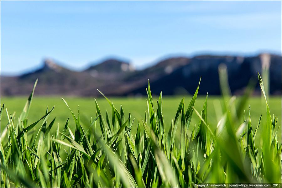 Весна в Бельбекской долине