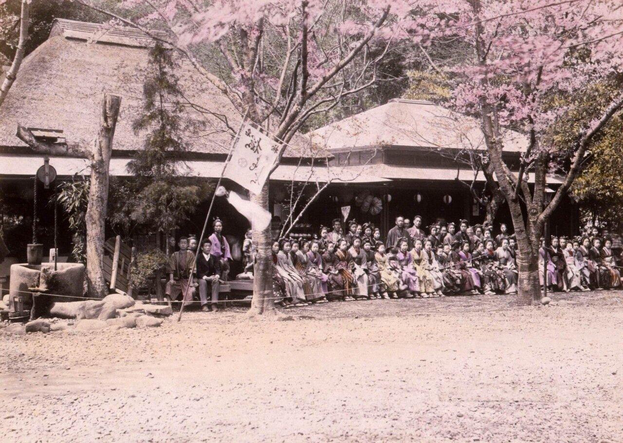 Люди на скамейках перед чайными домиками под цветущими вишневыми деревьями в парке Уэно в Токио. Япония. 1890 г.