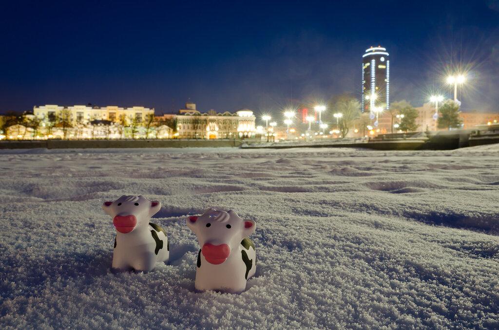 Зимний вечер в Екатеринбурге. Этот кадр занял второе место на фотоконкурсе. Пример фото на камеру Nikon D5100 KIT 18-55.