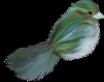 MRD_SnowyDreams-blue-greenBird.png