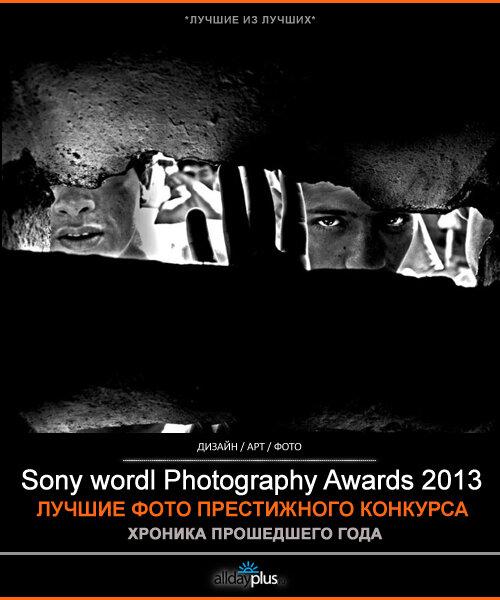 Sony World Photography Awards 2013. Итоги и победители. 32 фото