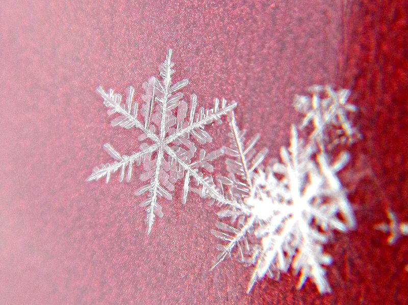 снежинка DSCN1238.jpg