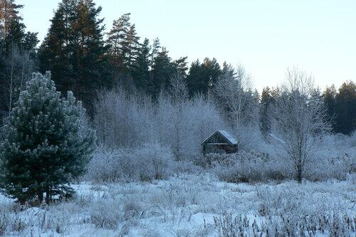 зимняя прогулка домик