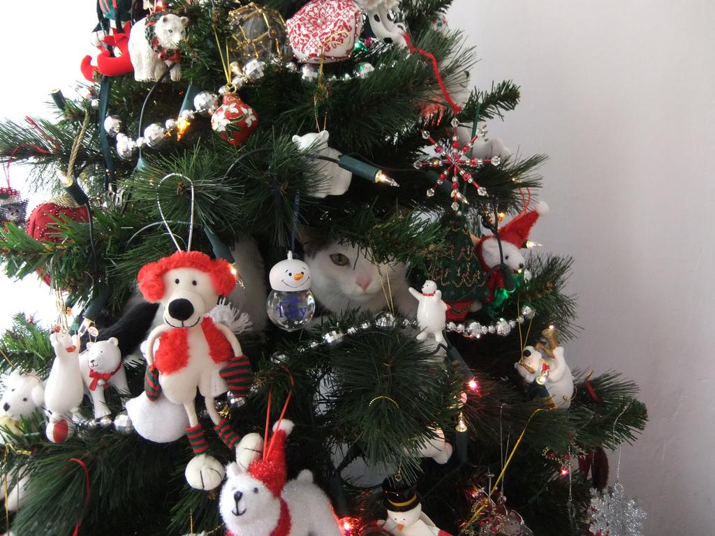 Коты на ёлке - фото 23