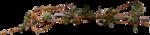 jsn_round4_mopb_twigs.png
