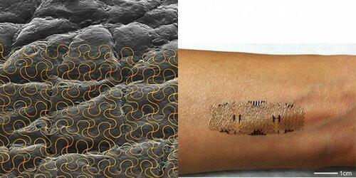 Печатаемые сенсоры помогут следить за здоровьем круглые сутки