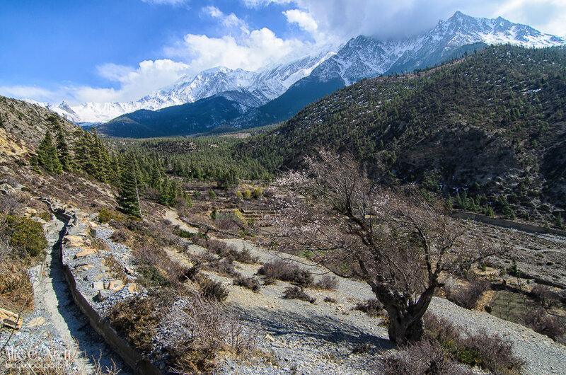 вид с холма на сторону с нашим палаточным лагерем между Марпой и Джомсомом, Гималаи, Непал