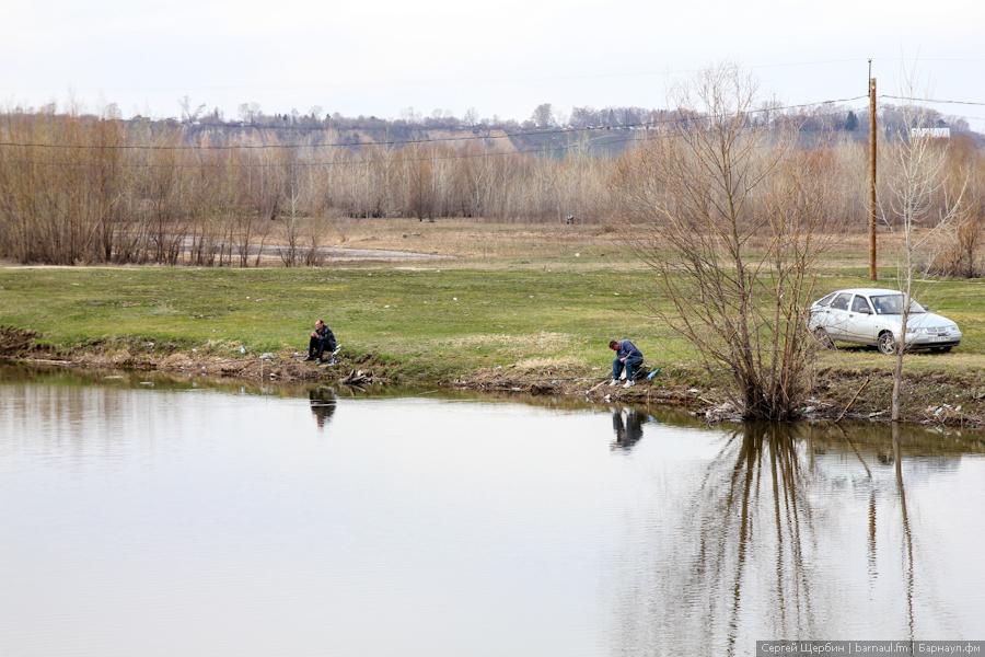 хорошее место рыбалки в барнауле