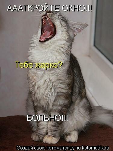 http://img-fotki.yandex.ru/get/6439/194408087.0/0_8d6d2_d06a21c6_L.jpg