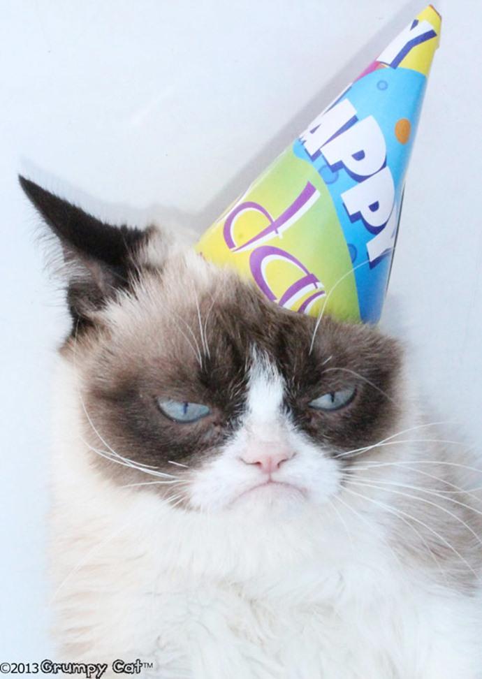 Grumpy Cat отметил день рождения