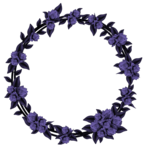 23 (24).png