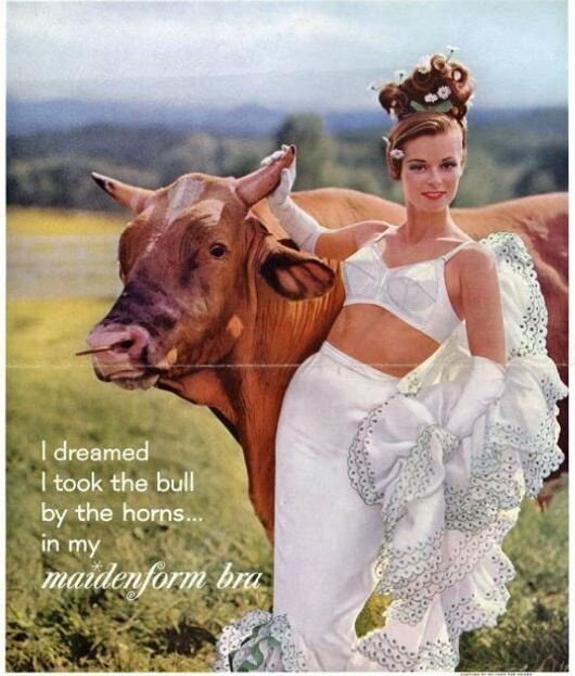 К чему снится бык беременной женщине