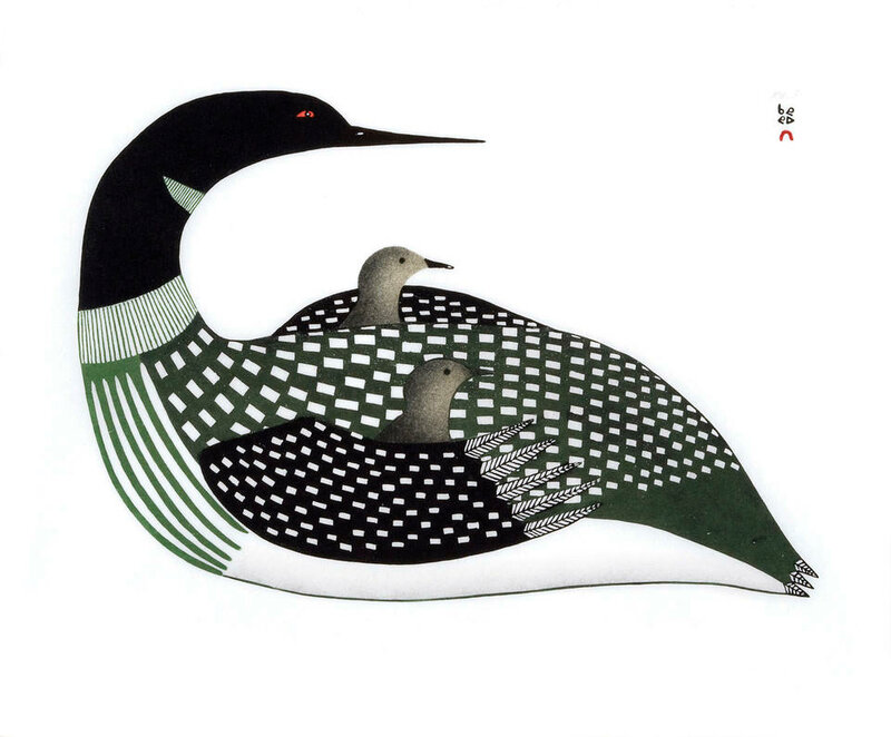 Cradled Loons