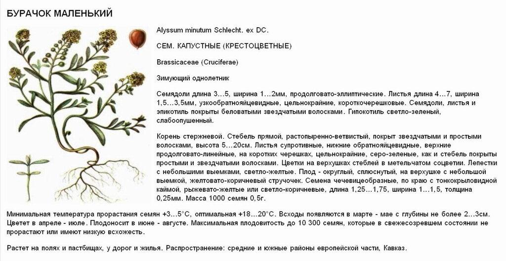 http://img-fotki.yandex.ru/get/6439/36055076.5f/0_85cab_7a1d87f1_XXL.jpg.jpg