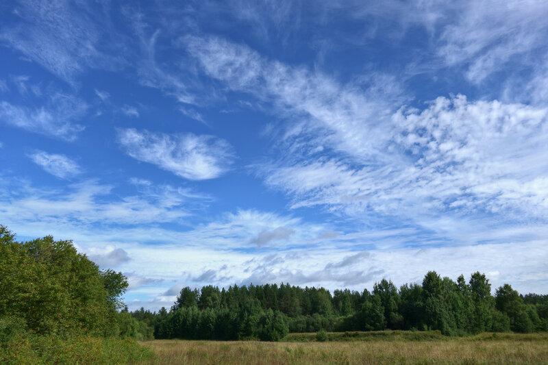 Бездонное августовское небо