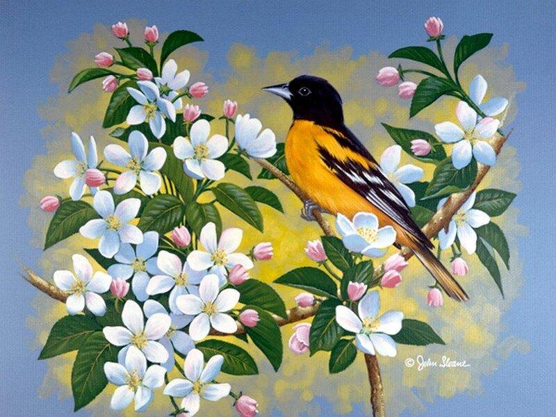 Рисованные открытки весной, как украшают