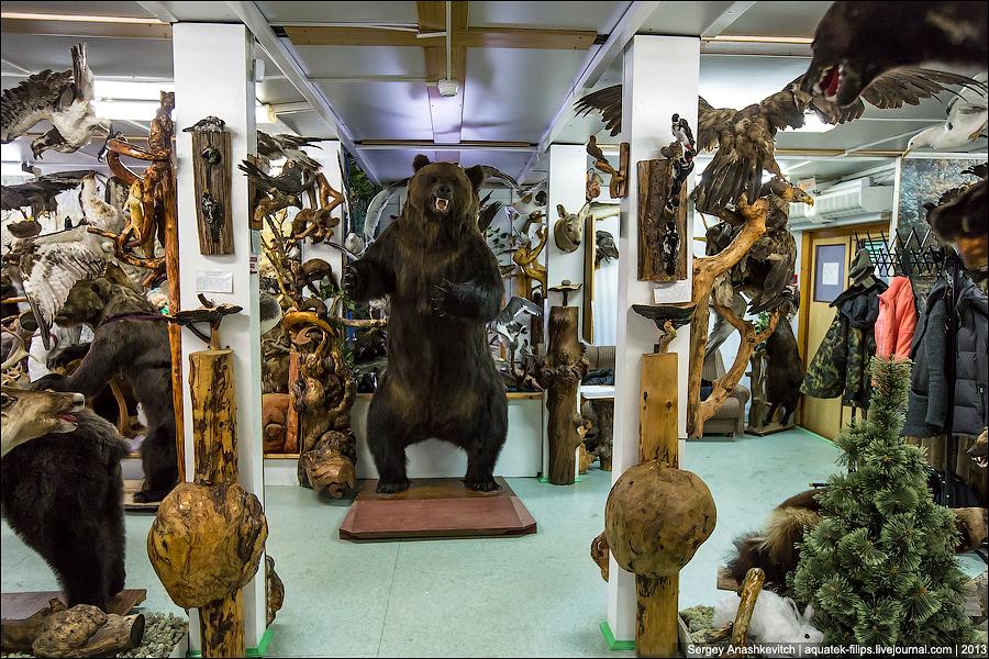 Музей природы и человека в Русскинской