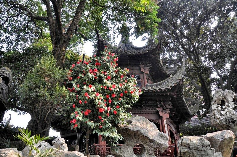 Китай. Шанхай. Сказка