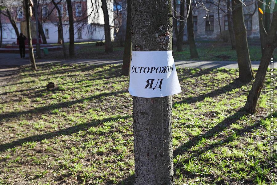 После Советска мы на автобусе переехали в город Котельнич. В Котельниче полном ходом идет борьба с клещами