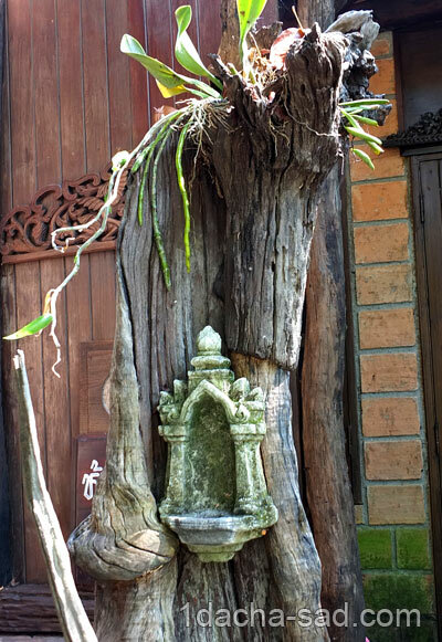Дерево и каменный алтарик