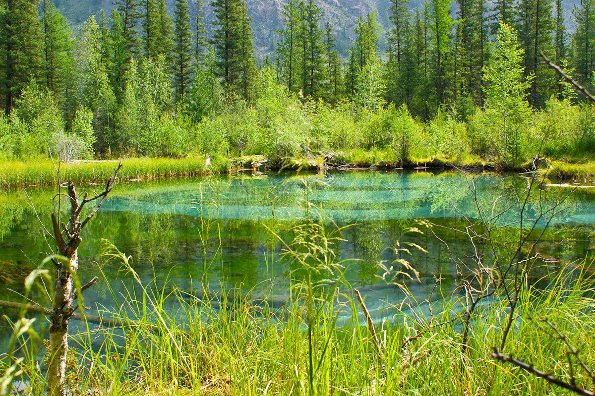 Гейзеровое озеро алтай - 2440
