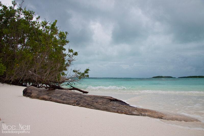 берег-пляж на острове Crasqui, los roques