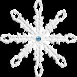 white winter_etdesigns (61).png