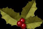 KAagard_MerryChristmas_Holly.png