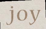 ldw_scc_wa1-joy.png
