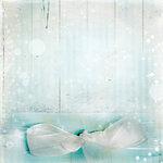 martad_WhiteForest_pp(6).jpg
